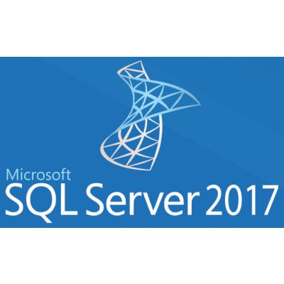OPEN BUSINESS SQL SERVER ESTANDAR 2017 SNGL OLP ELECTRONICA 228-11135